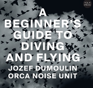 CD Jozef Dumoulin Orca Noise Unit - A Beginner's Guide to Diving and Flying